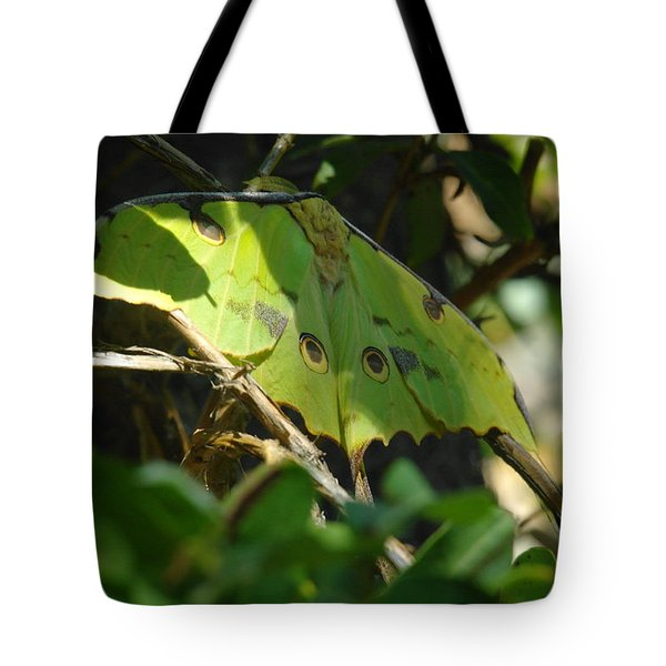 A Buttterfly Resting Tote Bag by Jeff Swan