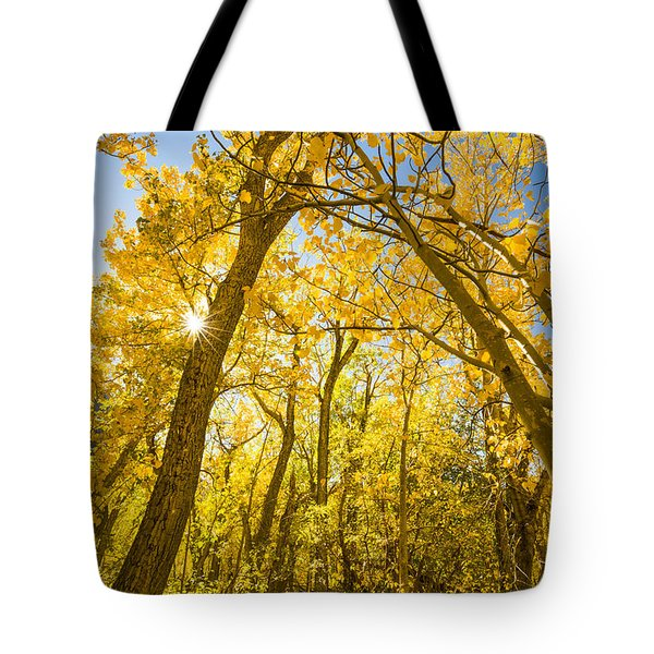 A Canopy Of Aspens At Mcgee Creek In The Eastern Sierras Tote Bag by Joe Doherty