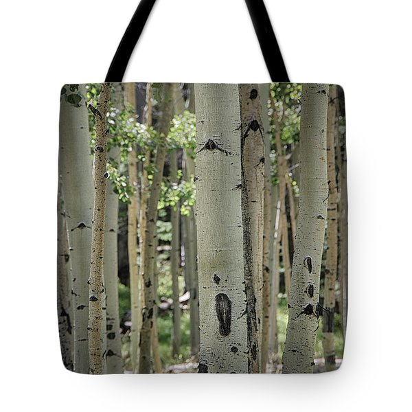 A Change Of Weather  Tote Bag