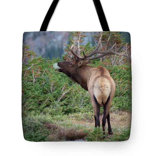 Tote Bag featuring the photograph A Chill In The Air by Jim Garrison