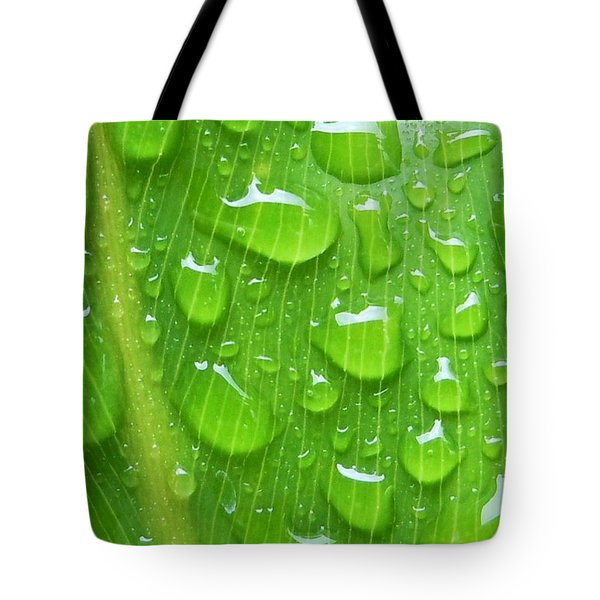 Tote Bag featuring the photograph A Cleansing Morning Rain by Robert ONeil