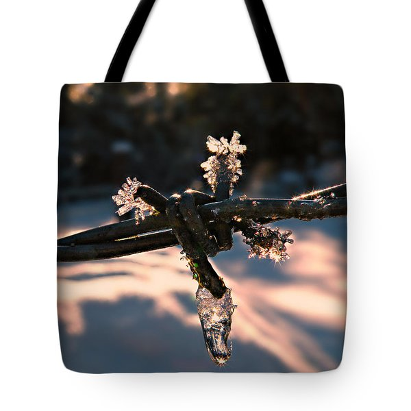 A Cold Welcome Tote Bag