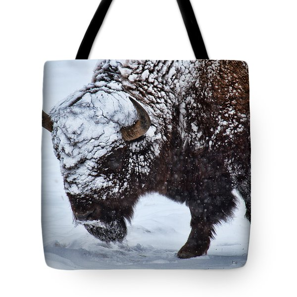 Tote Bag featuring the photograph A Cold Wind Blows by Jim Garrison