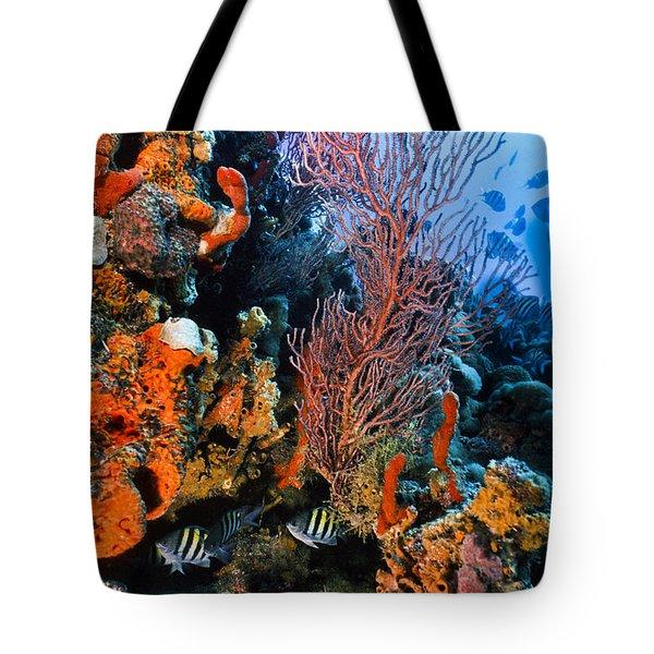 A Colorful Ledge Tote Bag