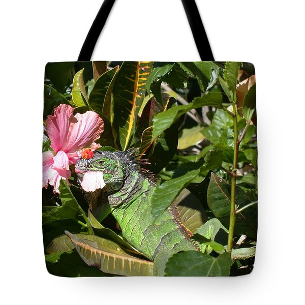 A Colorful Meal Tote Bag