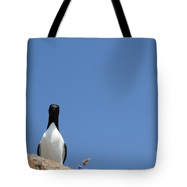 A Curious Bird Tote Bag by Anne Gilbert