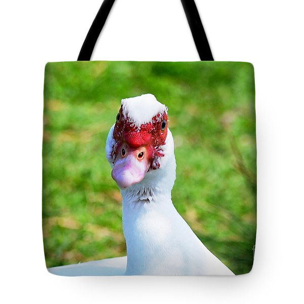 Tote Bag featuring the photograph A Curious Muscovy Duck  by Susan Wiedmann