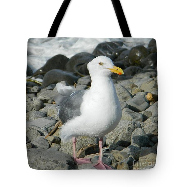 Tote Bag featuring the photograph A Curious Seagull by Chalet Roome-Rigdon
