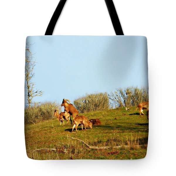 A Day In The Wild   Tote Bag