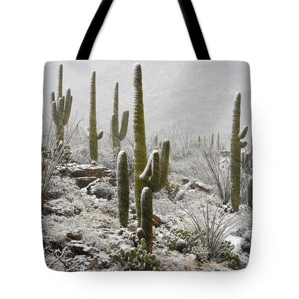A Desert Blizzard  Tote Bag by Saija  Lehtonen
