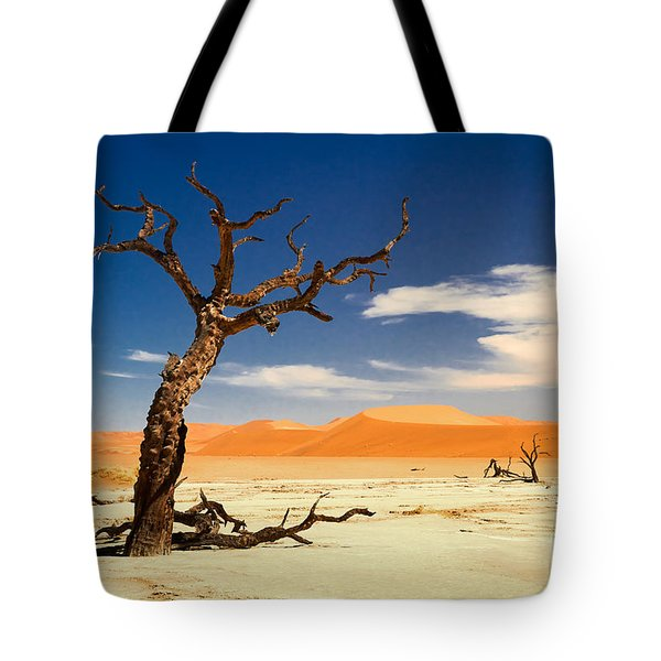 A Desert Story Tote Bag