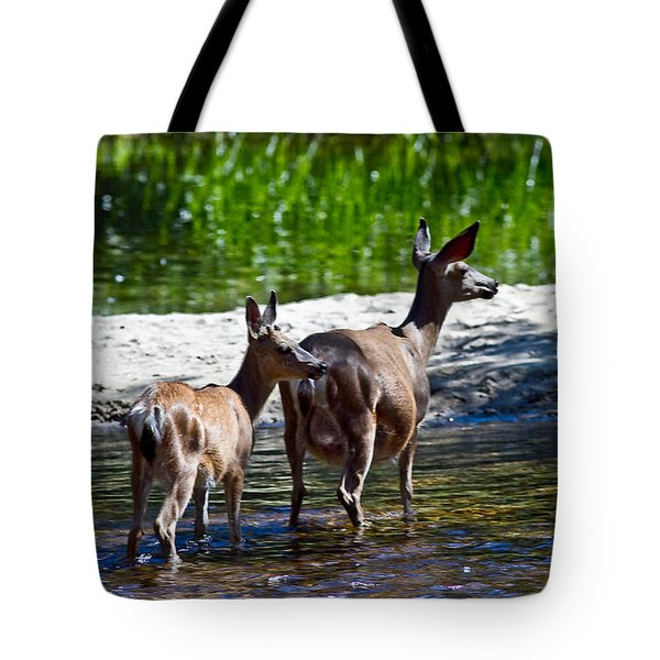 A Doe And Fawn Tote Bag