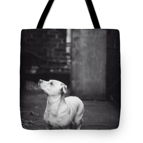 Tote Bag featuring the photograph A Dog On The Roof In New York City by Carol Whaley Addassi