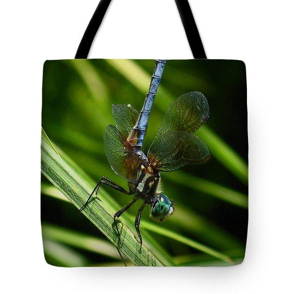 A Dragonfly Tote Bag by Raymond Salani III