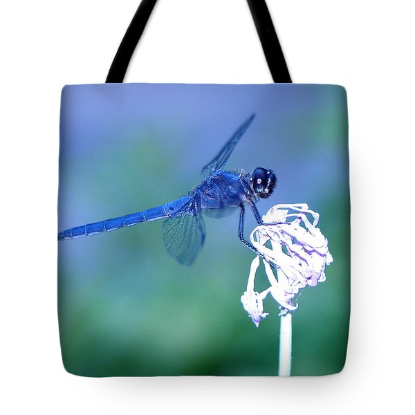 A Dragonfly V Tote Bag by Raymond Salani III