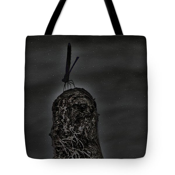 A Dragons Night Tote Bag by Kim Pate