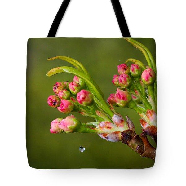 A Drop Of Water Tote Bag