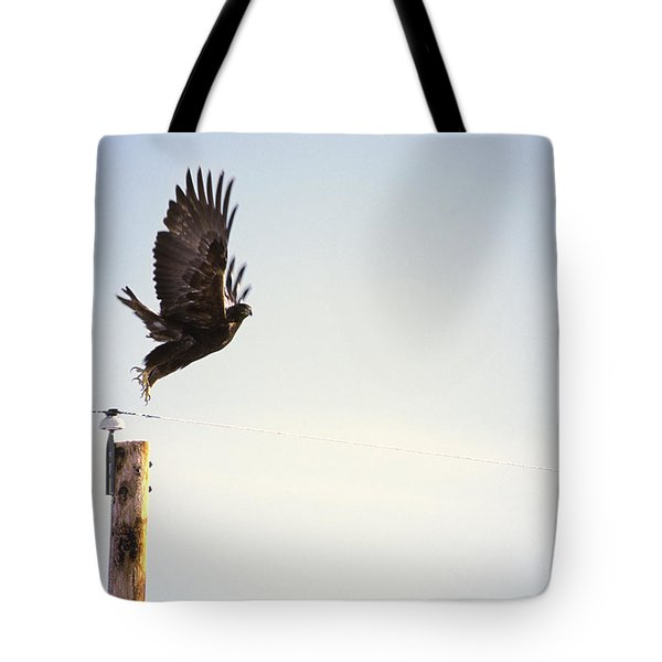 A Falcon Takes To The Air Tote Bag