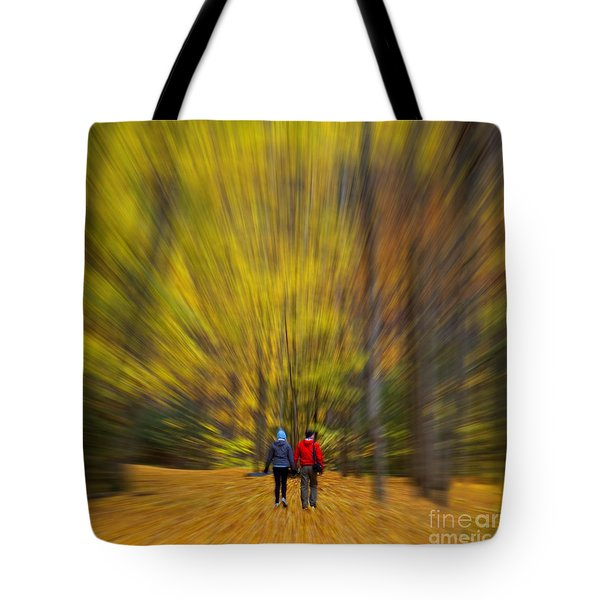 Tote Bag featuring the photograph A Fall Stroll Taughannock by Jerry Fornarotto