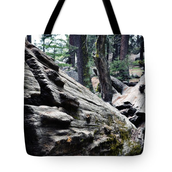 Tote Bag featuring the photograph A Fallen Giant Sequoia by Kyle Hanson