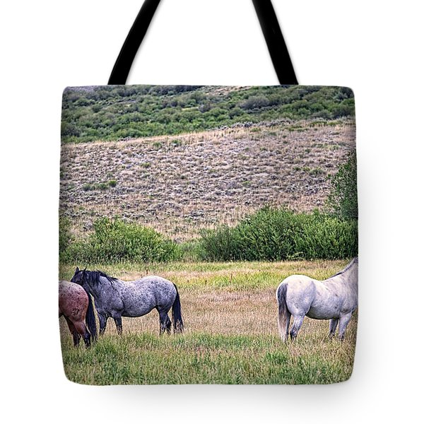 Tote Bag featuring the photograph A Family Squabble by Jim Garrison