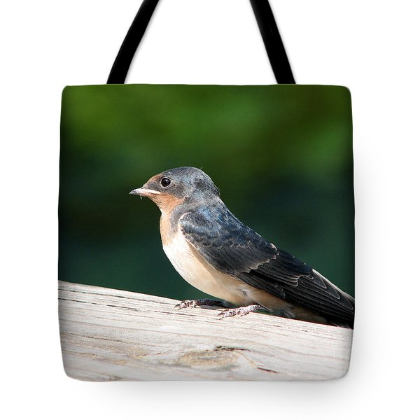 A Female Purple Martin Is Watching You Tote Bag by Eva Kaufman