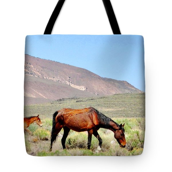 Tote Bag featuring the photograph A Few Hours Later by Marilyn Diaz