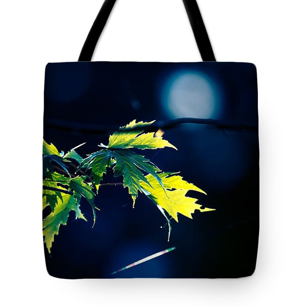 A Few Leaves In The Sun Two Tote Bag