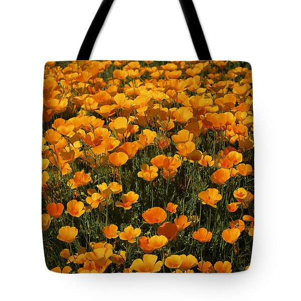 A Field Of Poppies Tote Bag by Phyllis Denton