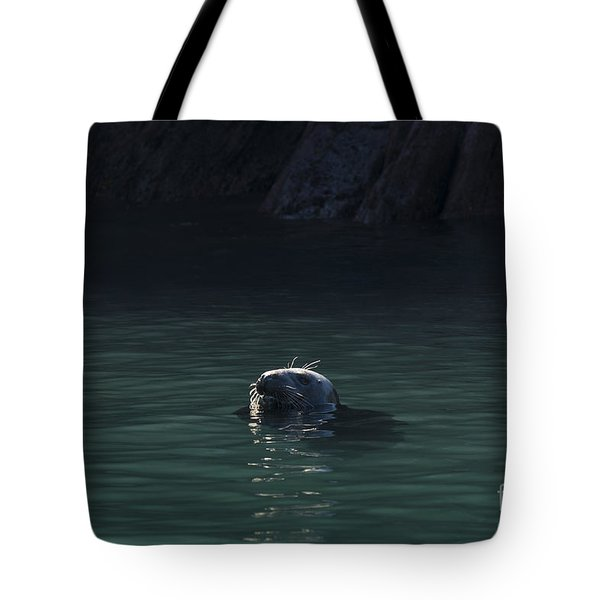 A Fine Day For A Swim Tote Bag by Anne Gilbert