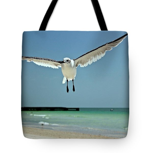A Florida Gull Tote Bag