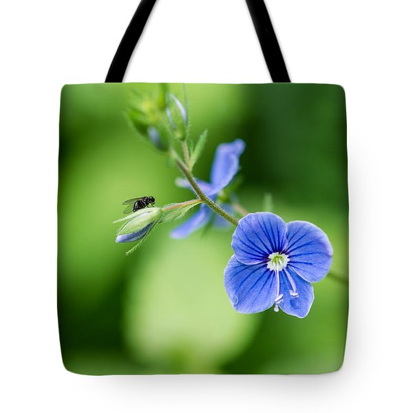 A Flower And A Fly - Featured 3 Tote Bag