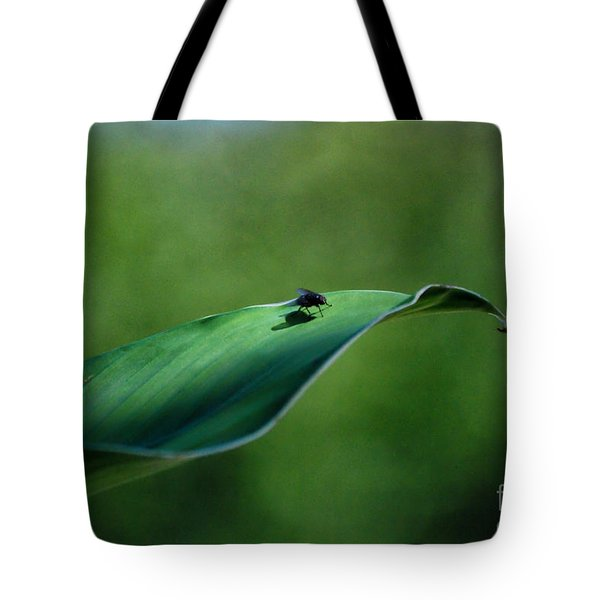 Tote Bag featuring the photograph A Fly And His Shadow by Thomas Woolworth