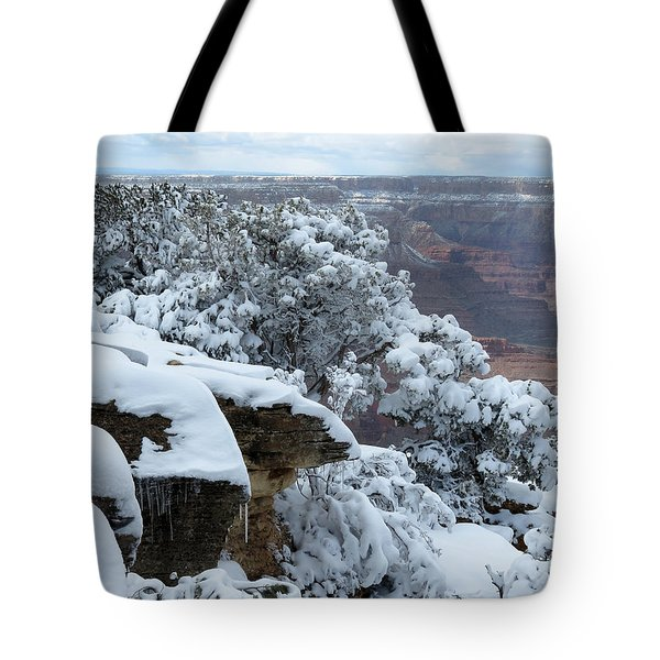 A Foot At The Canyon Tote Bag by Laurel Powell