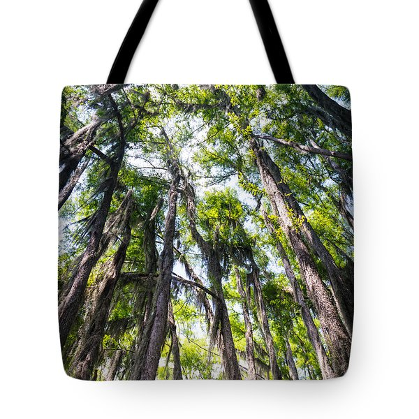 A Forest Of Bald Cypress Trees In The Caddo Lake Area Tote Bag
