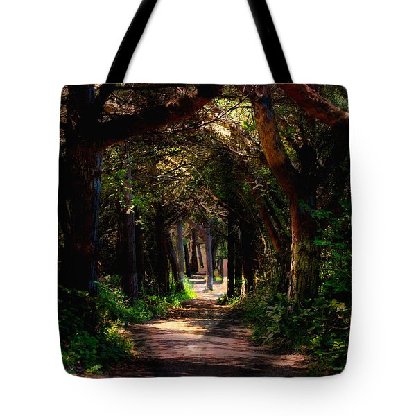 A Forest Path -dungeness Spit - Sequim Washington Tote Bag