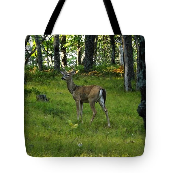 A Free Day Tote Bag