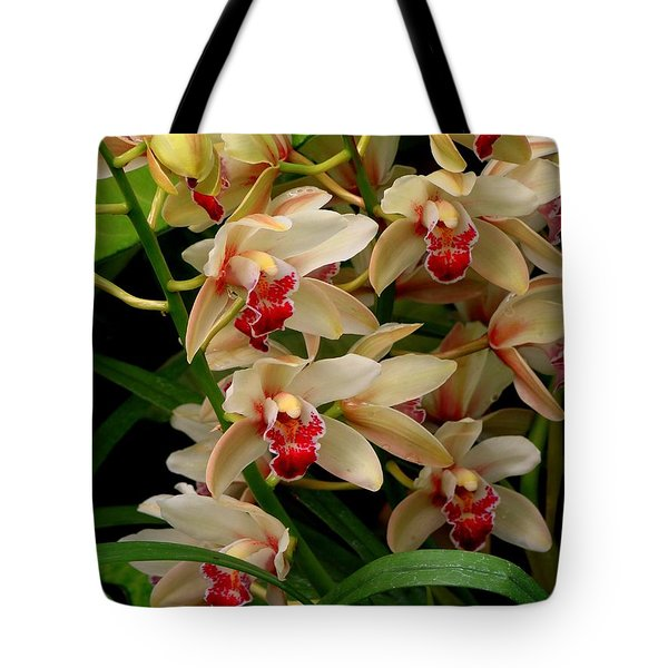 Tote Bag featuring the photograph A Gathering by Rodney Lee Williams