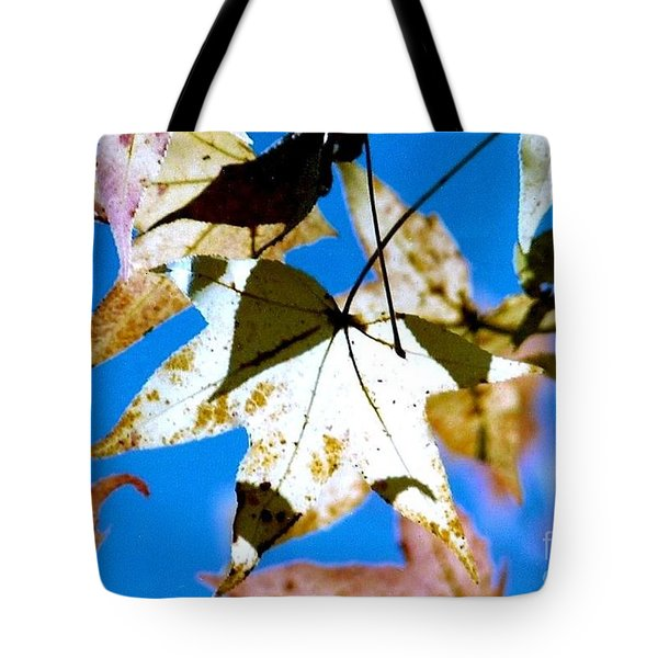 Tote Bag featuring the photograph Autumn  In New Orleans Louisiana by Michael Hoard