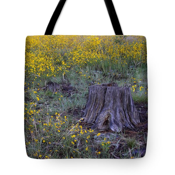Tote Bag featuring the photograph A Good Thinking Spot by Ruth Jolly