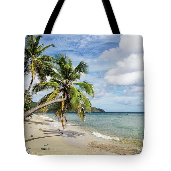 A Gorgeous Palm Tree Stretches Tote Bag
