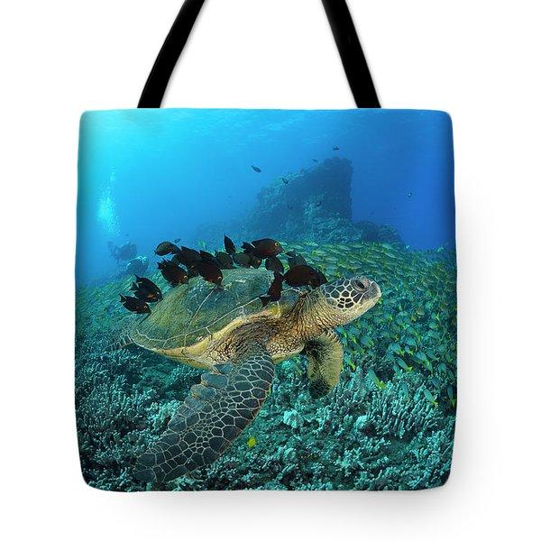 A Green Sea Turtlec  Chelonia Mydas Tote Bag