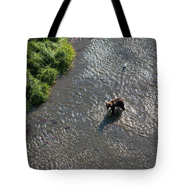 A Grizzly Bear Feasts On Sockeye Salmon Tote Bag