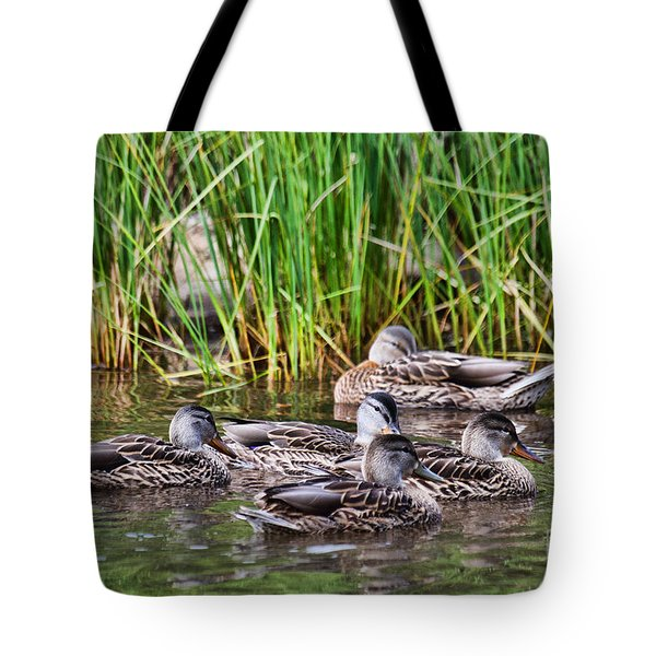 Tote Bag featuring the photograph A Hen Party by Jim Garrison