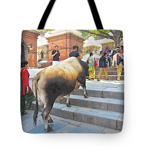 A Holy Cow Climbing Steps From Bagmati River In Kathmandu-nepal  Tote Bag