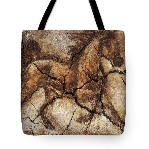 A Horse - Cave Art Tote Bag