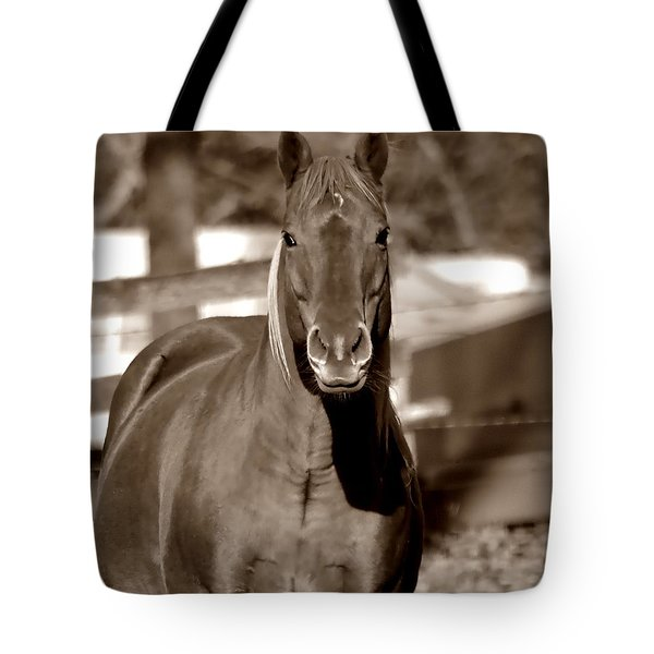 Tote Bag featuring the photograph A Horse Is A Horse by Deena Stoddard