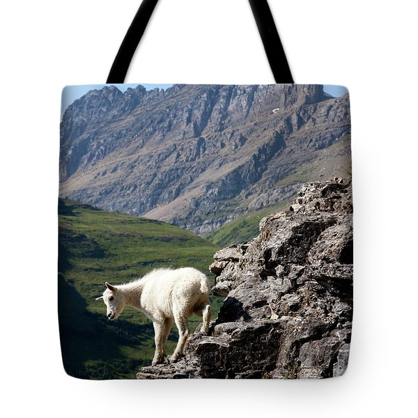 A Kid Mountain Goat In Glacier National Tote Bag