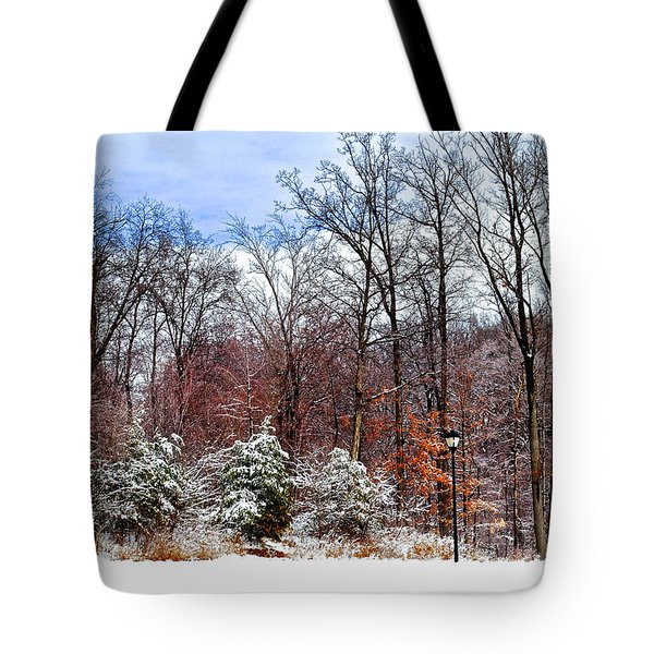 A Light Dusting Tote Bag by Frozen in Time Fine Art Photography