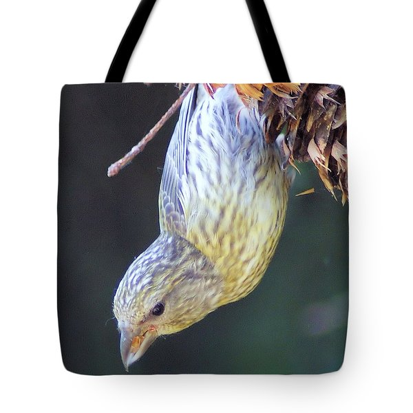 A Little Bird Eating Pine Cone Seeds  Tote Bag by Jeff Swan